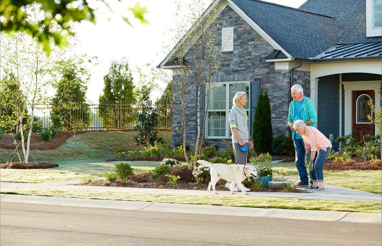 new homes in fort mill south carolina at carolina orchards del webb
