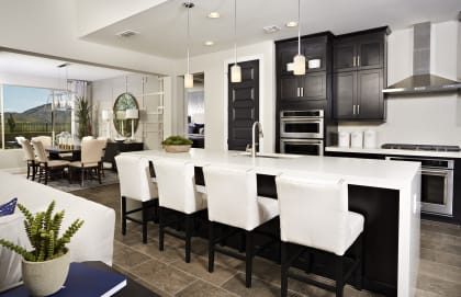 Homes For Sale In San Tan Valley Az New Build Homes Pulte