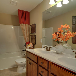 Double Vanity in Guest Bath
