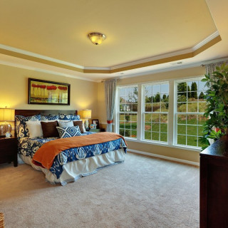The Prestige Package: Tray ceiling in owner's suite