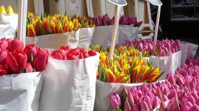 výzdoba květiny