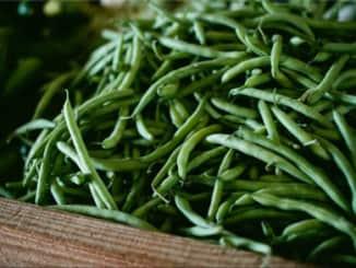 zelené fazole