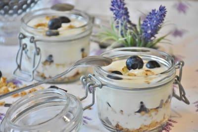 jogurtovy-dezert-s-boruvkami_uy1mfn