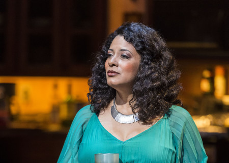 Cynda Williams in Paul Oakley Stovall's 'Immediate Family' at the Mark Taper Forum.