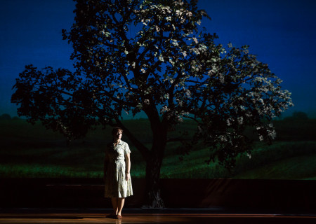 "Elizabeth Stanley in the Tony Award-winning ""The Bridges of Madison County"" The Broadway Musical at the Center Theatre Group/Ahmanson Theatre, December 8, 2015, through January 17, 2016. ""Bridges"" has a book by Marsha Norman, music and lyrics by Jason Robert Brown and is based on the novel by Robert James Waller. Bartlett Sher directs. Tickets are available at CenterTheatreGroup.org or by calling (213) 972-4400.  <br />