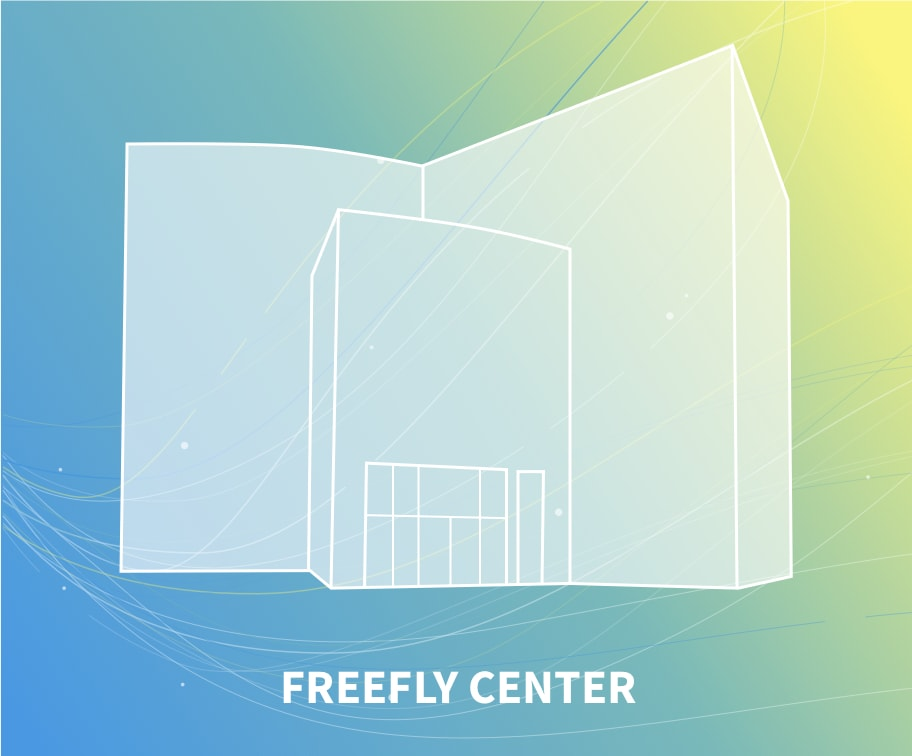 Freefly center windtunnel