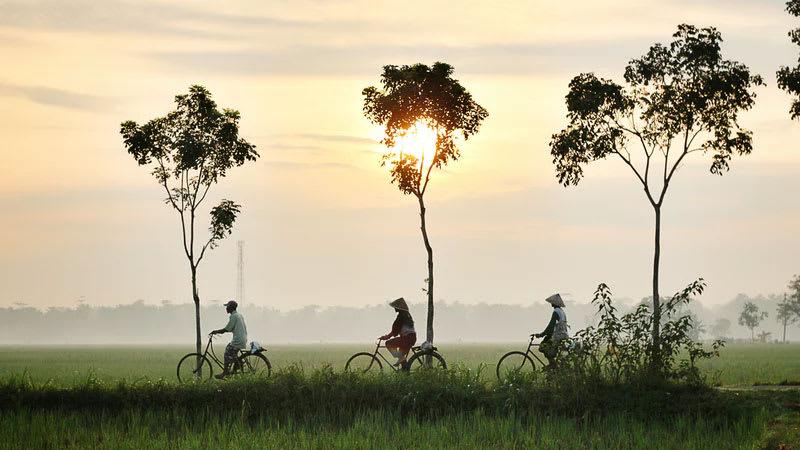 Three people ride their bike through an Indonesian field