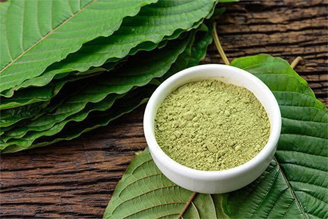 A Bowl of Kratom Powder