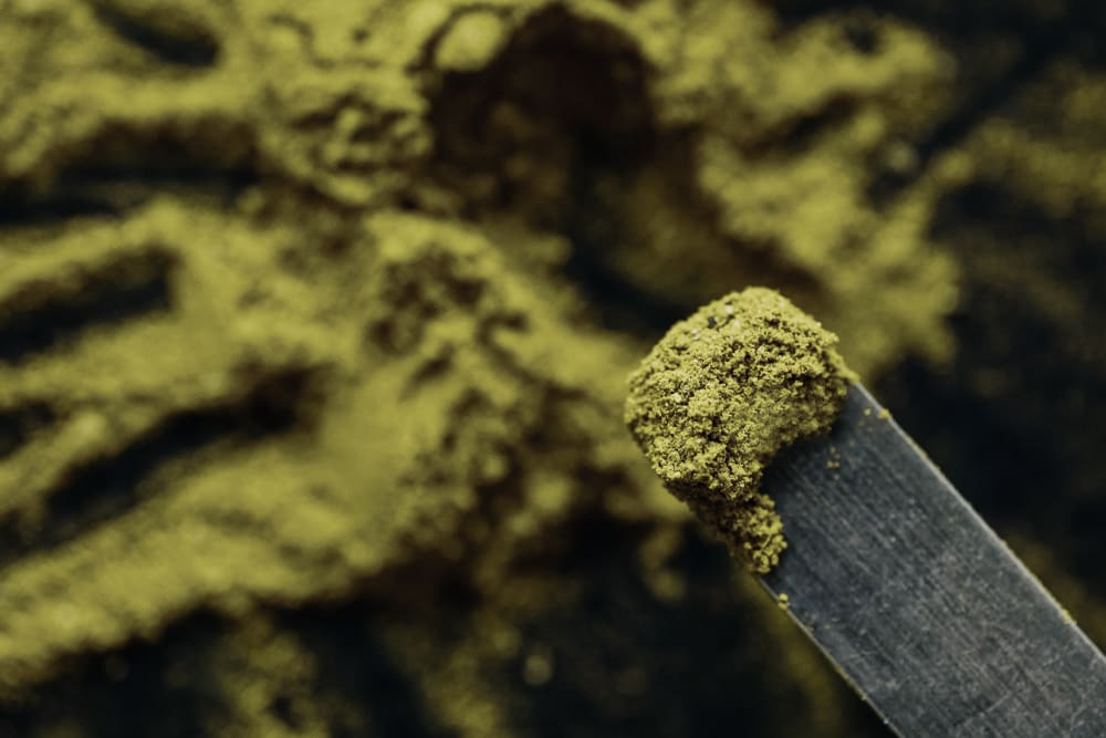 A user measures out a microdose of kratom