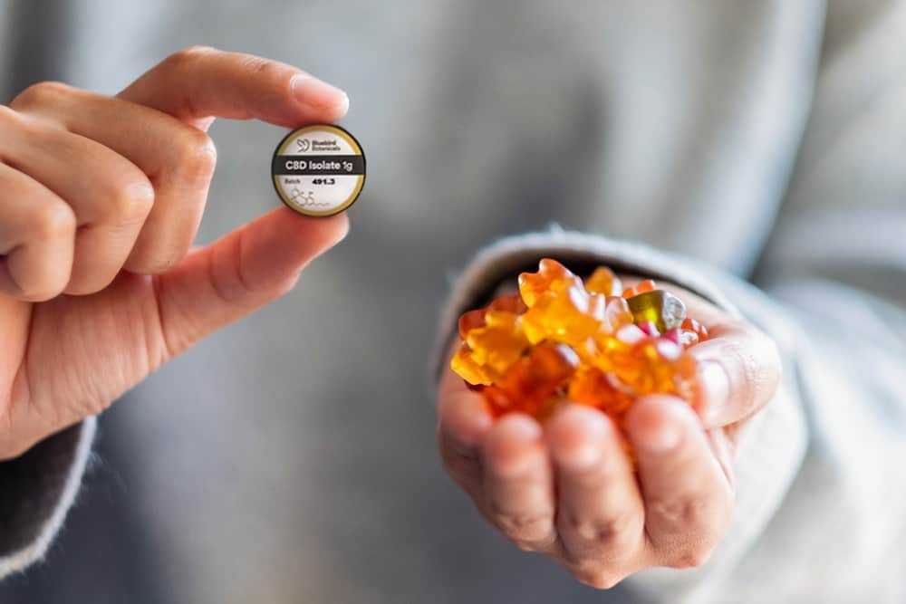 A person holds up their homemade CBD gummies and a container of CBD isolate powder