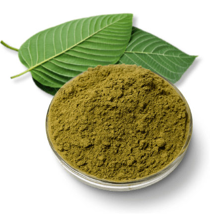 Kratom Powder Made from Kratom Leaves