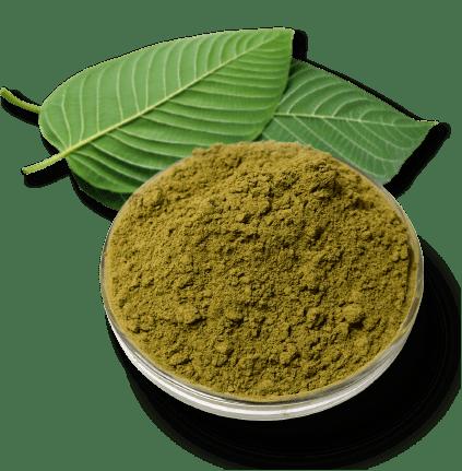 Kratom Powder Made from Kratom Leaves