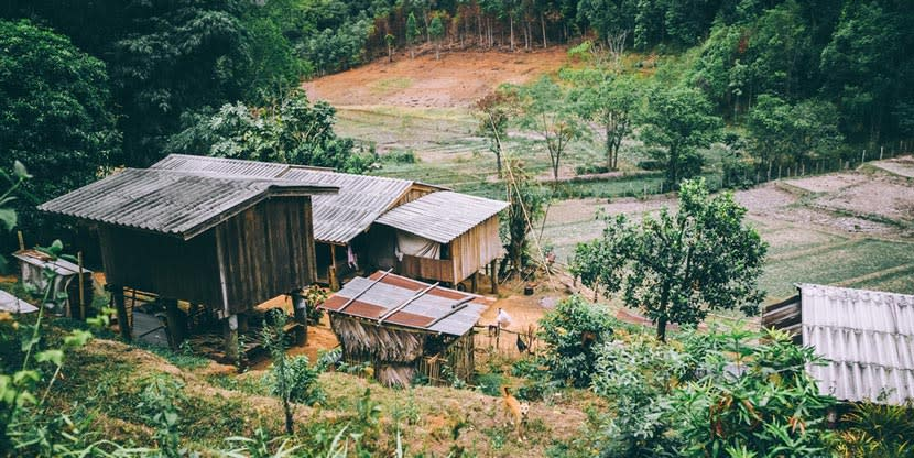 A small farm nestled in a small jungle clearing
