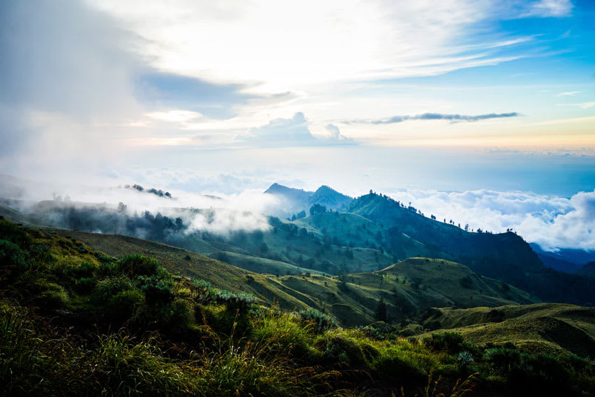 An Indonesian Rainforest with Bali in the Background