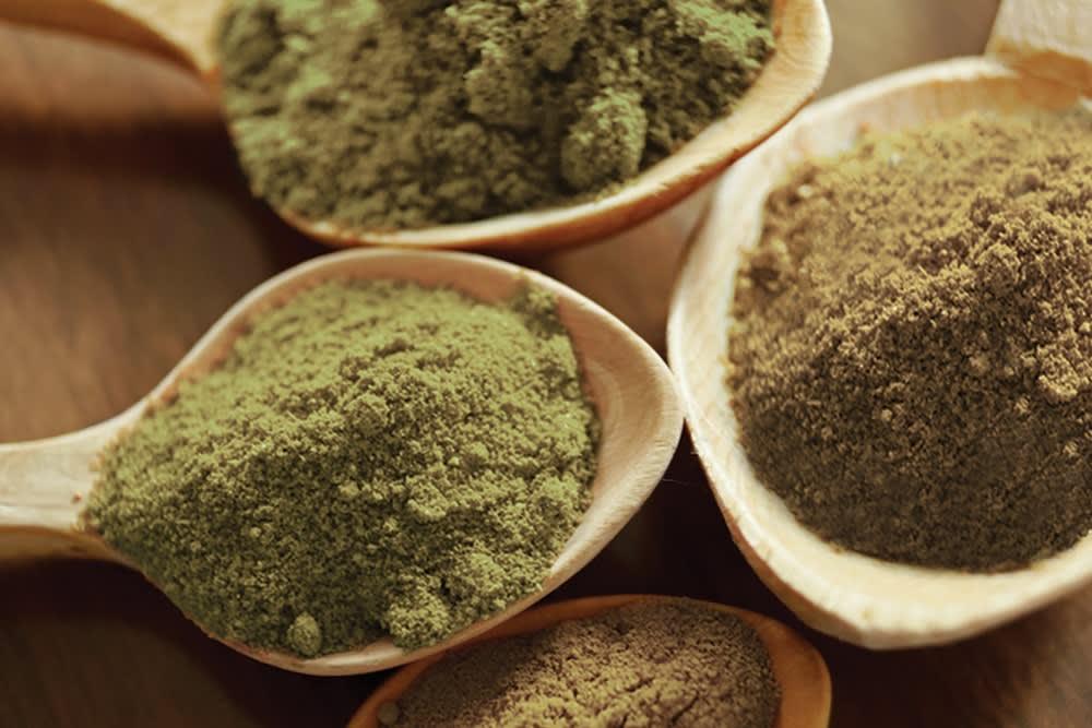 What is Lion's Mane Mushroom Powder?