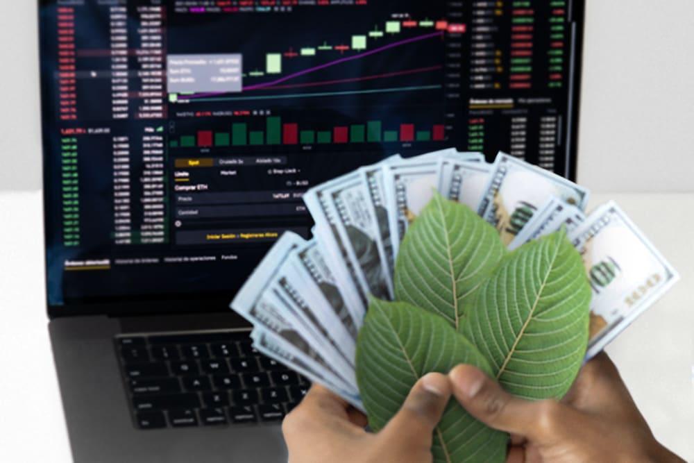Kratom Stocks: Can You Invest in Kratom?