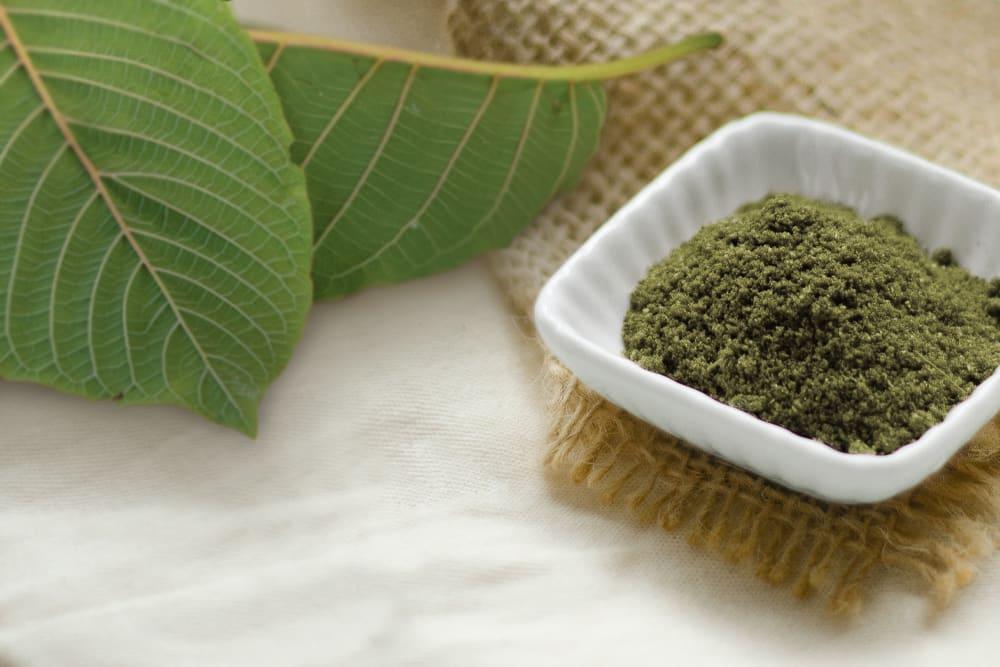 A bowl of mitragyna hirsuta powder beside some mitragyna hirsuta leaves.