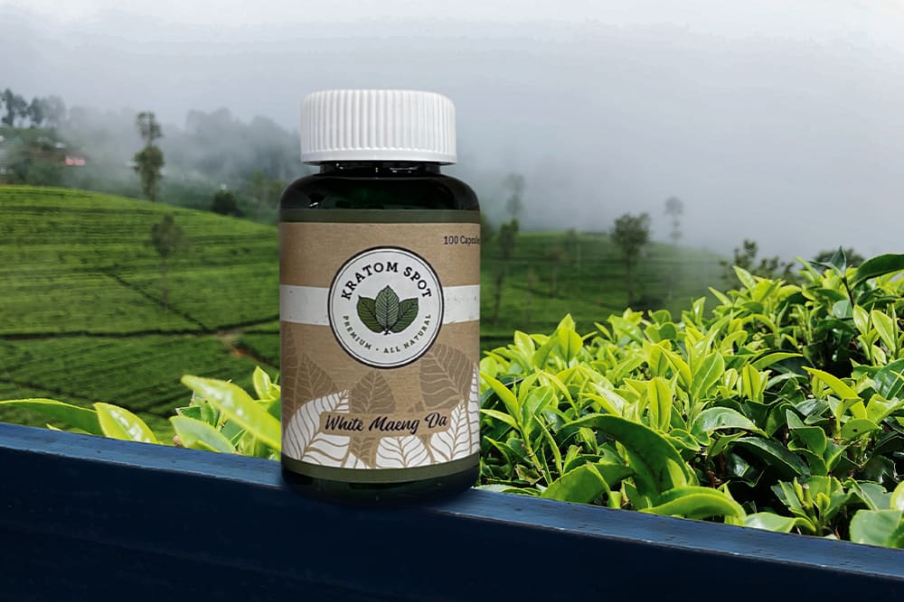 A Bottle of White Vein Kratom Capsules on a Rural Patio