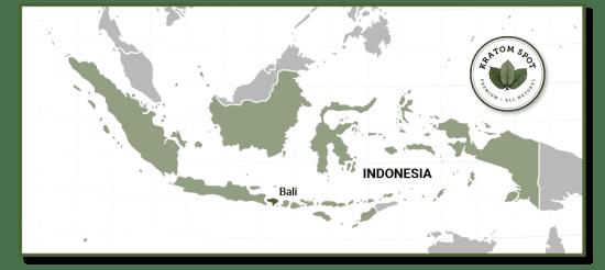Kratom Map of Bali