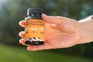 A robust hand holding a bottle of Lazarus Naturals CBD Capsules