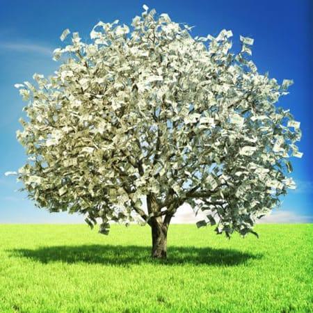 good fortune prosperity empowerment