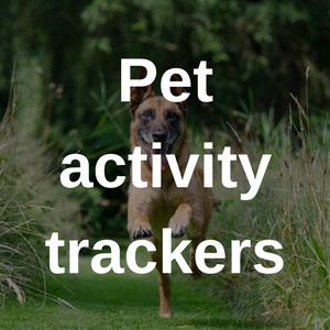 pet activity trackers
