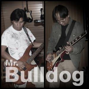 Mr. Bulldog