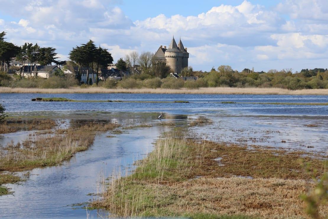 Rallye au cœur du Morbihan