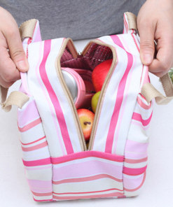 stylish travel lunch bag