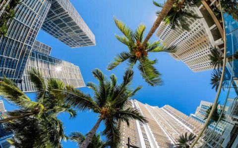 5 vecindarios en Miami ideales para invertir en propiedades de alquiler