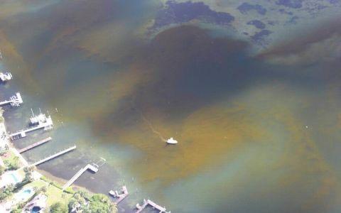 Efecto de la marea roja en los bienes raíces de Florida