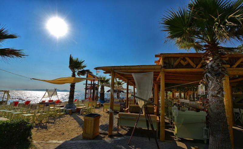 Macaw Beach Bar Area - Akti Tou Iliou