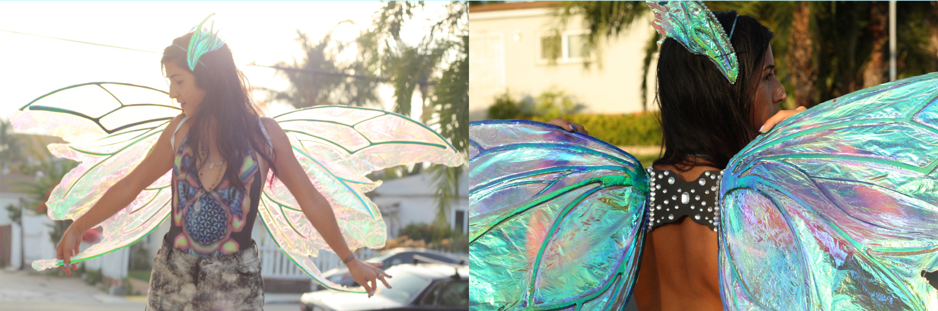 DIY Fairy Wings Example 2
