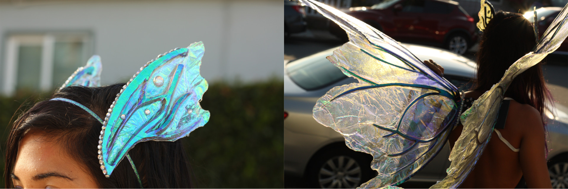DIY Fairy Wings Example 1
