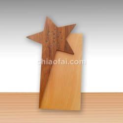 五角星實木獎牌25x10 2