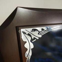 鋁板八角高檔獎牌5 (2)