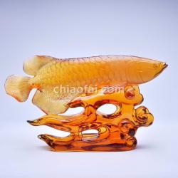 金龍魚2 2