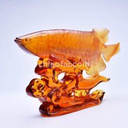 金龍魚2 3