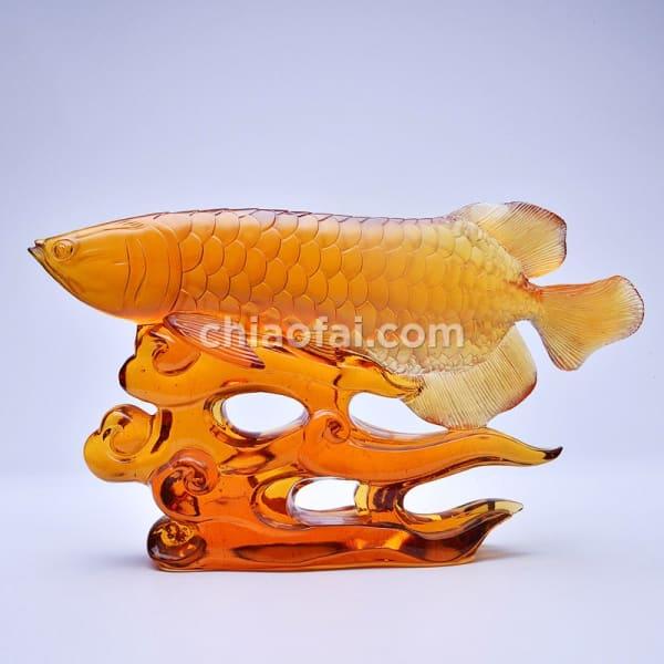 金龍魚2 1