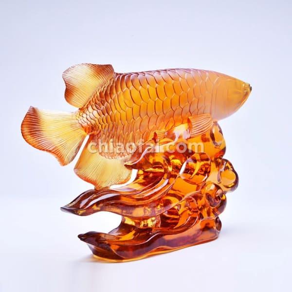 金龍魚2 4