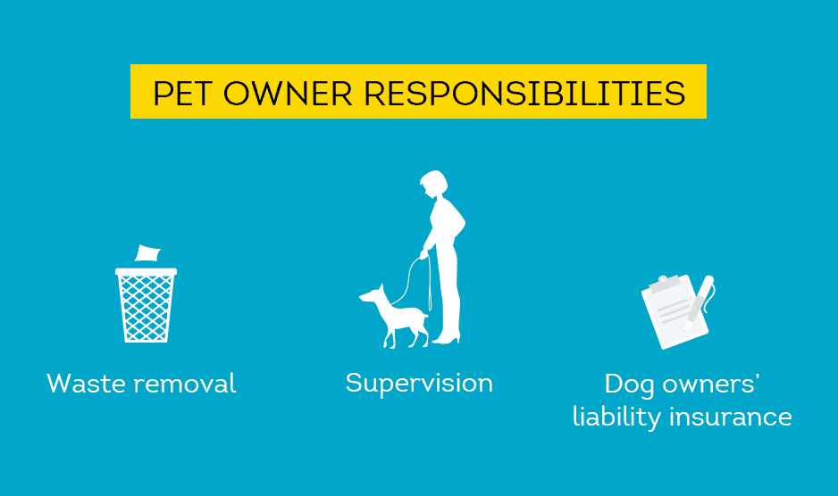 pet owner responsibilities