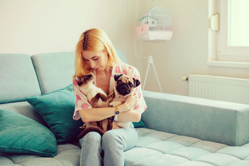 Landlords should ask potential renters if they have pets