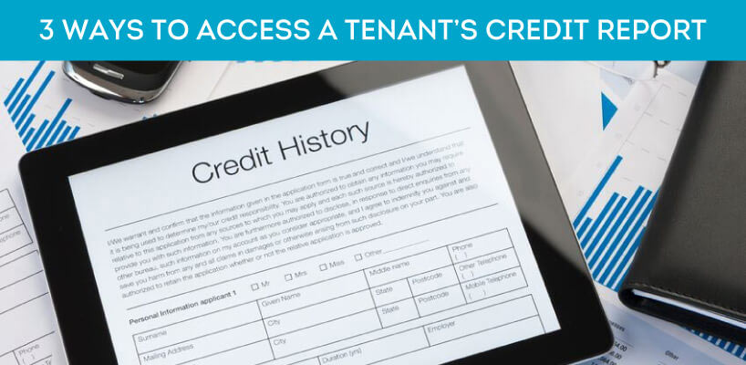 tenant screening credit report