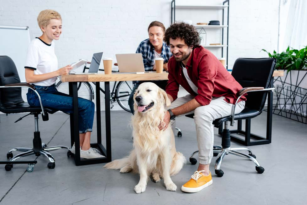 happy employees in dog-friendly office