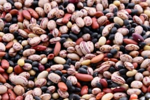 beans for high blood pressure