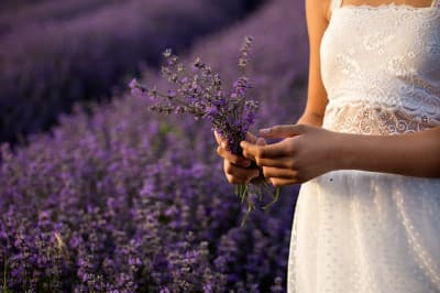 lavender essential oil treatment