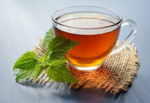 nettle leaves infused tea