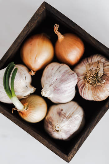 garlic and onion as remedies for hemorrhoids