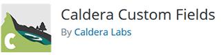 Caldera Forms Custom Fields