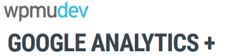 Google Analytics +